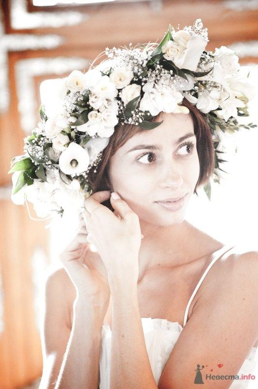 Фото 47798 в коллекции Моя свадьба - Цирца