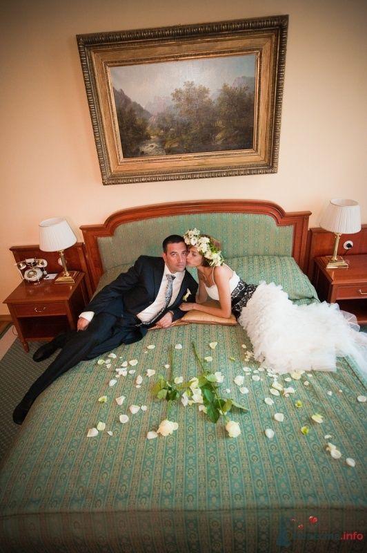 Фото 47810 в коллекции Моя свадьба - Цирца