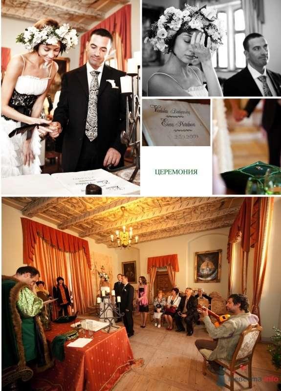 Фото 53462 в коллекции Моя свадьба - Цирца