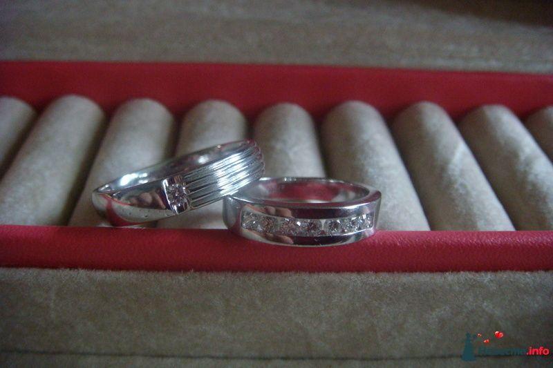 Фото 96116 в коллекции Подготовка к свадьбе