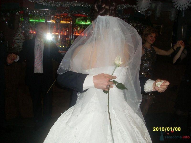 Фото 60874 в коллекции Свадьба 8 января 2010 год)))  - Koshka_Lu