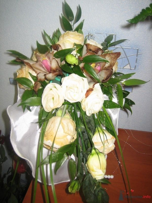 Фото 61424 в коллекции Свадьба 8 января 2010 год)))  - Koshka_Lu