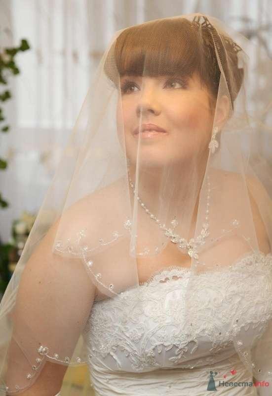 Фото 61832 в коллекции Как Кошка замуж выходила 08.01.2010 - Koshka_Lu