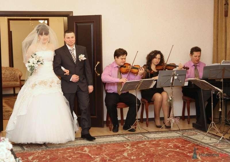 Фото 68375 в коллекции Как Кошка замуж выходила 08.01.2010 - Koshka_Lu