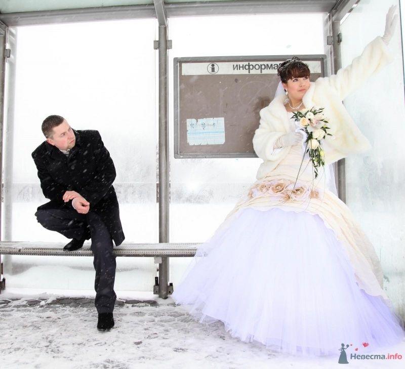 Фото 68405 в коллекции Как Кошка замуж выходила 08.01.2010 - Koshka_Lu