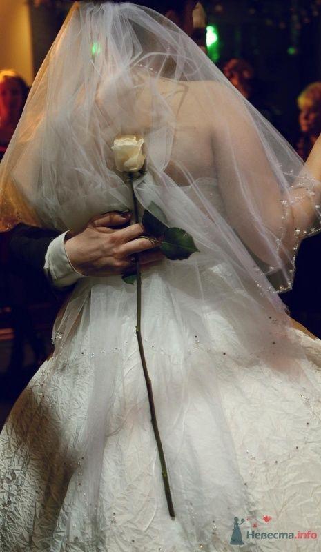 Фото 68896 в коллекции Как Кошка замуж выходила 08.01.2010 - Koshka_Lu