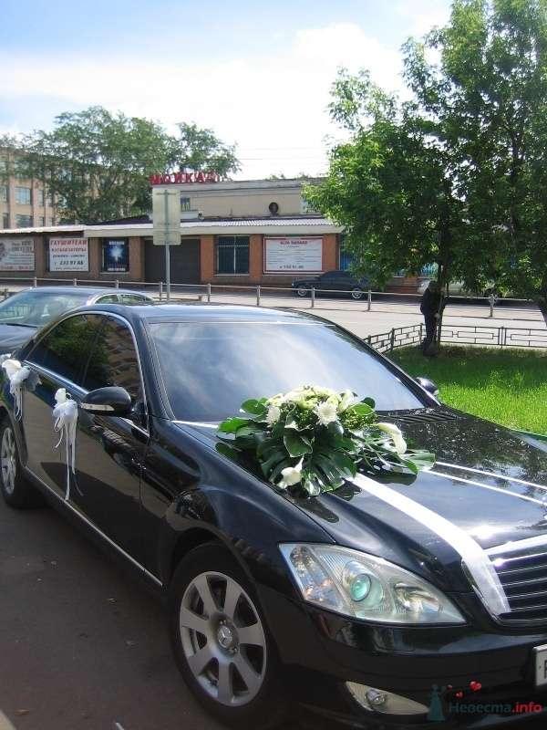 """Оформление автомобиля - фото 50889 Салон цветов """"SpringPoint"""""""