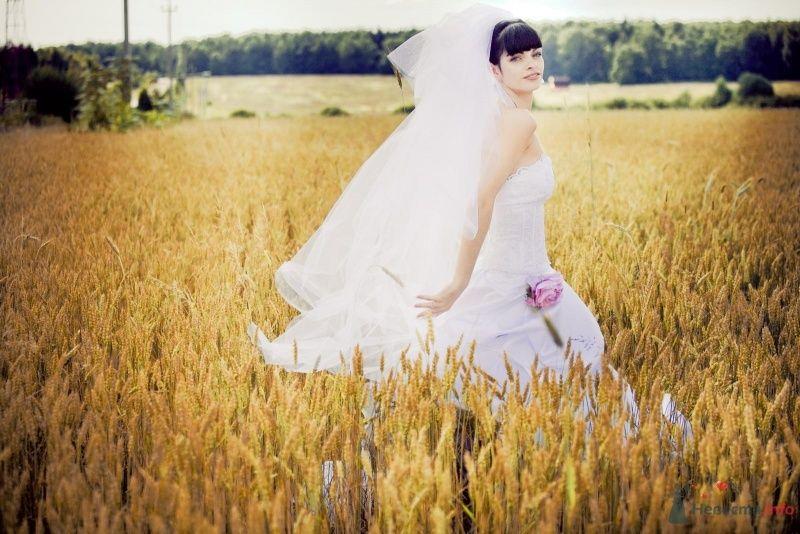 Невеста в белом длинном платье стоит в пшеничном поле - фото 49115 tufelka