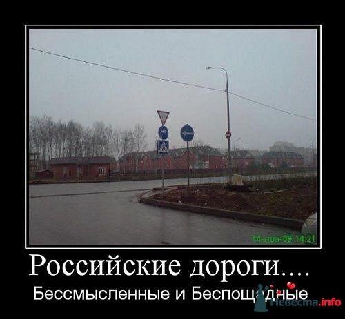 Фото 170598 в коллекции Мои фотографии - tufelka