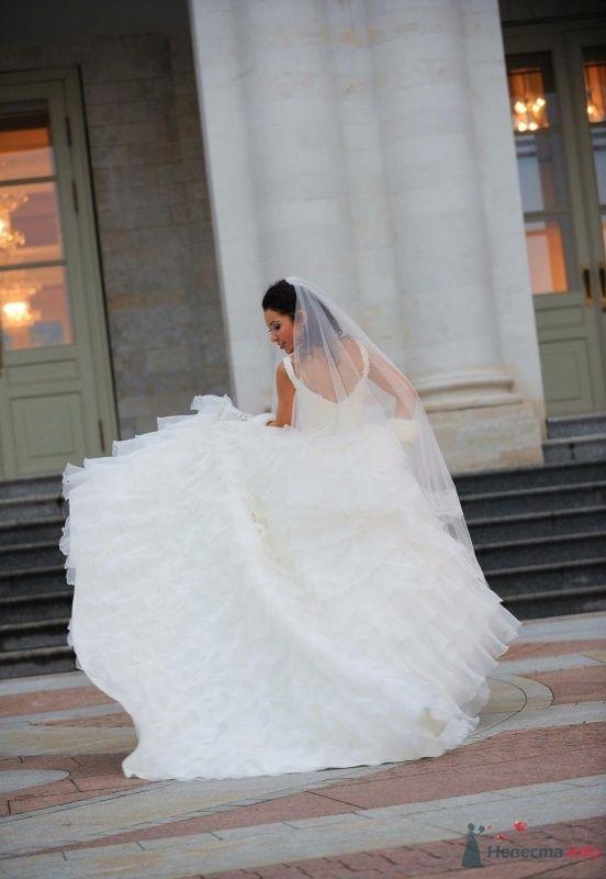 Лебединый танец.... - фото 62997 Laura-Esmeralda