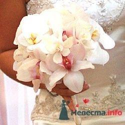 Фото 53848 в коллекции букет - Свадебный распорядитель Ольга Фокс