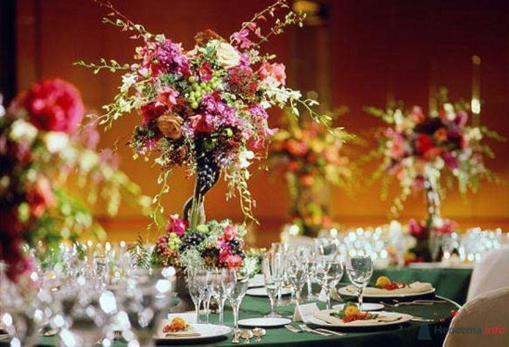 Фото 55230 в коллекции мои фотографии - Свадебный распорядитель Ольга Фокс