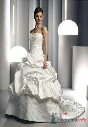 Фото 55246 в коллекции мои фотографии - Свадебный распорядитель Ольга Фокс
