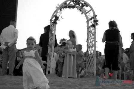 Фото 56061 в коллекции мои фотографии - Свадебный распорядитель Ольга Фокс
