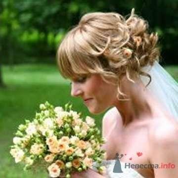 Фото 56196 в коллекции мои фотографии - Свадебный распорядитель Ольга Фокс