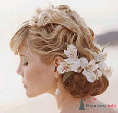 Фото 56199 в коллекции мои фотографии - Свадебный распорядитель Ольга Фокс