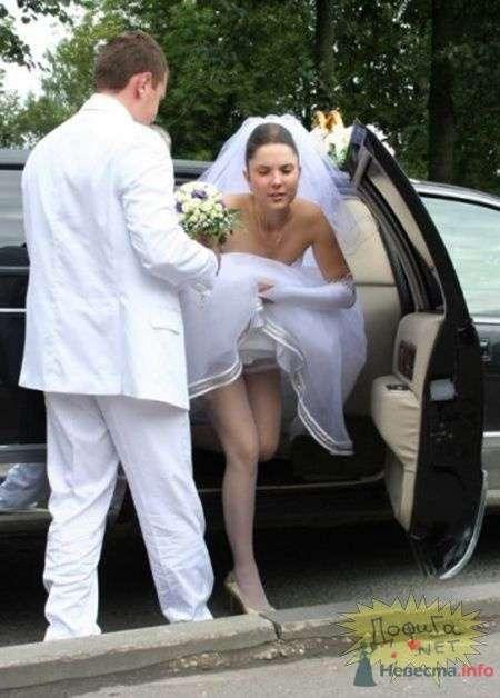 Фото 57206 в коллекции мои фотографии - Свадебный распорядитель Ольга Фокс
