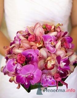 Фото 57309 в коллекции мои фотографии - Свадебный распорядитель Ольга Фокс