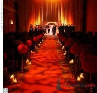 Фото 57499 в коллекции мои фотографии - Свадебный распорядитель Ольга Фокс
