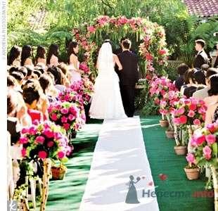 Фото 57500 в коллекции мои фотографии - Свадебный распорядитель Ольга Фокс