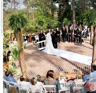 Фото 59444 в коллекции мои фотографии - Свадебный распорядитель Ольга Фокс