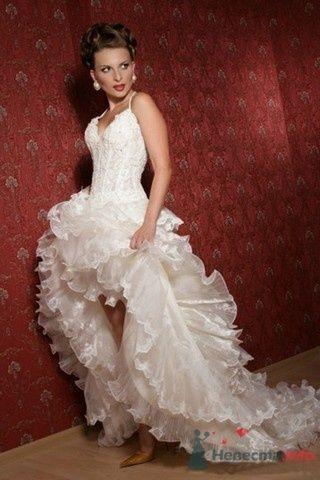Фото 61149 в коллекции мои фотографии - Свадебный распорядитель Ольга Фокс