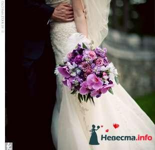 Фото 111945 в коллекции мои фотографии - Свадебный распорядитель Ольга Фокс