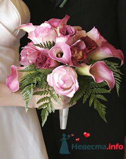 Фото 111954 в коллекции мои фотографии - Свадебный распорядитель Ольга Фокс