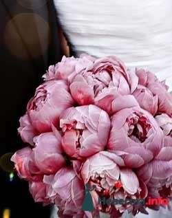 Фото 111955 в коллекции мои фотографии - Свадебный распорядитель Ольга Фокс