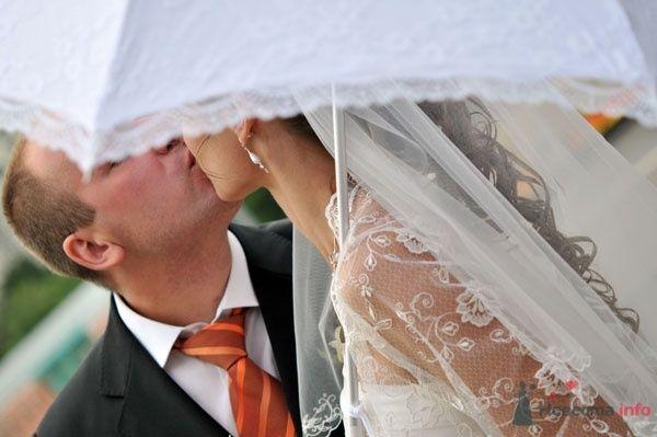 Фото 51569 в коллекции Свадебные - Петрова Виления, свадебный фотограф