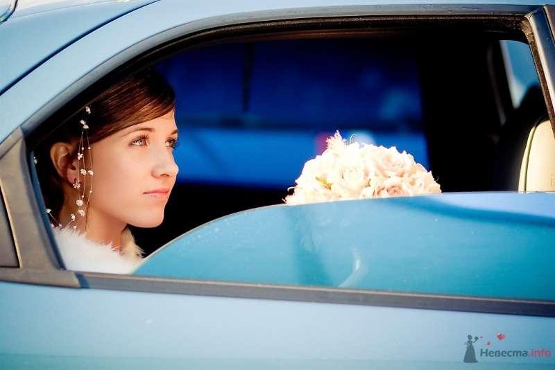 Фото 51685 в коллекции Свадьба Александра и Ольги - Sunny-Angel