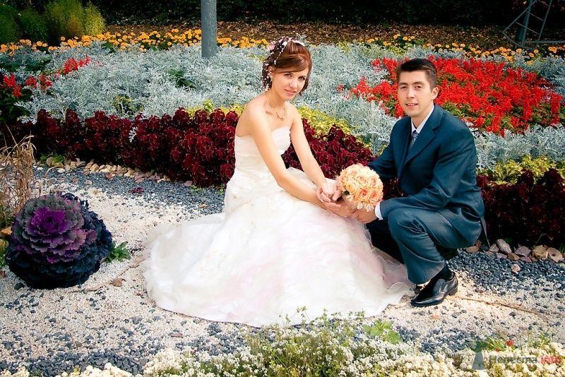 Фото 51694 в коллекции Свадьба Александра и Ольги - Sunny-Angel