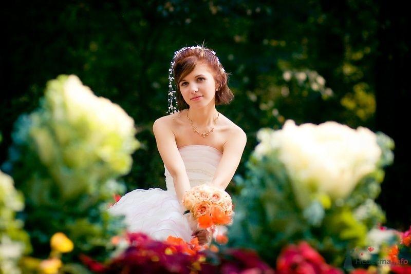 Фото 51696 в коллекции Свадьба Александра и Ольги
