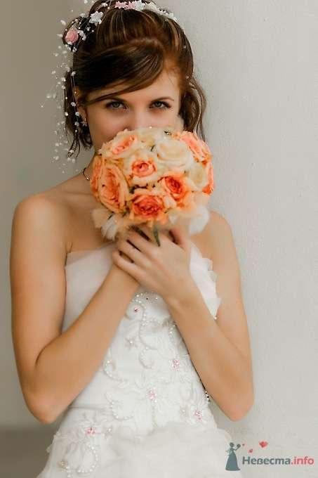 Фото 51702 в коллекции Свадьба Александра и Ольги - Sunny-Angel