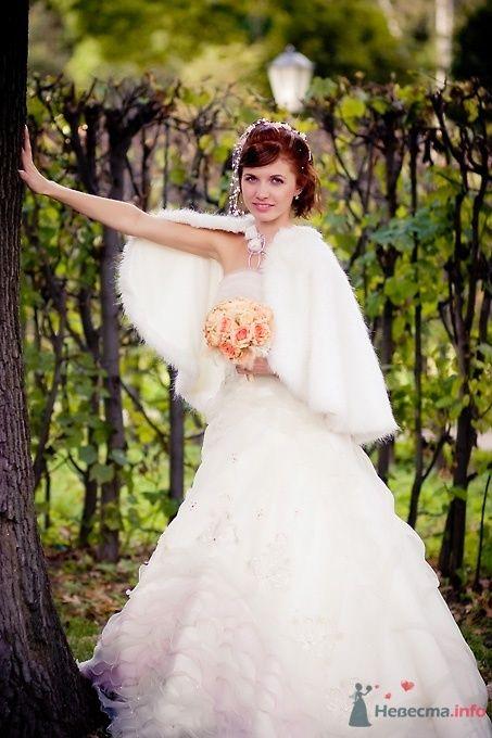 Фото 51703 в коллекции Свадьба Александра и Ольги - Sunny-Angel