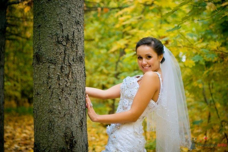 Невеста в белом платье стоит в осеннем лесу возле дерева - фото 51838 Sunny-Angel