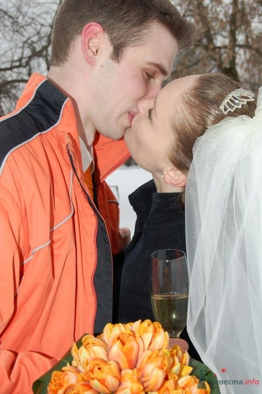 """Фото 25076 в коллекции """"Сквозь тернии к звёздам"""" - наша свадьба состоялась! :) - Minutka"""