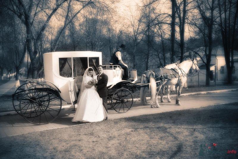 Белая карета на фоне осеннего пейзажа, запряженная парой лошадей и с кучером. - фото 68507 Vesnyshka