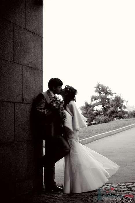 Свадебный поцелуй - фото 35935 Фотограф Владимир Будков