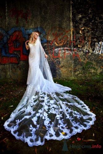 Фото 14101 в коллекции Разное (не мои работы) - Свадебный распорядитель - Бедрикова Оксана