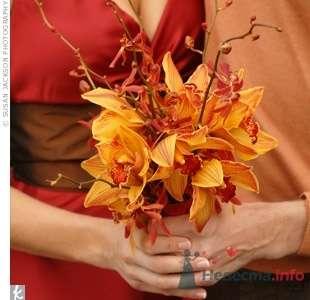 Фото 20640 в коллекции Разное (не мои работы) - Свадебный распорядитель - Бедрикова Оксана