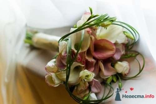 Фото 20641 в коллекции Разное (не мои работы) - Свадебный распорядитель - Бедрикова Оксана