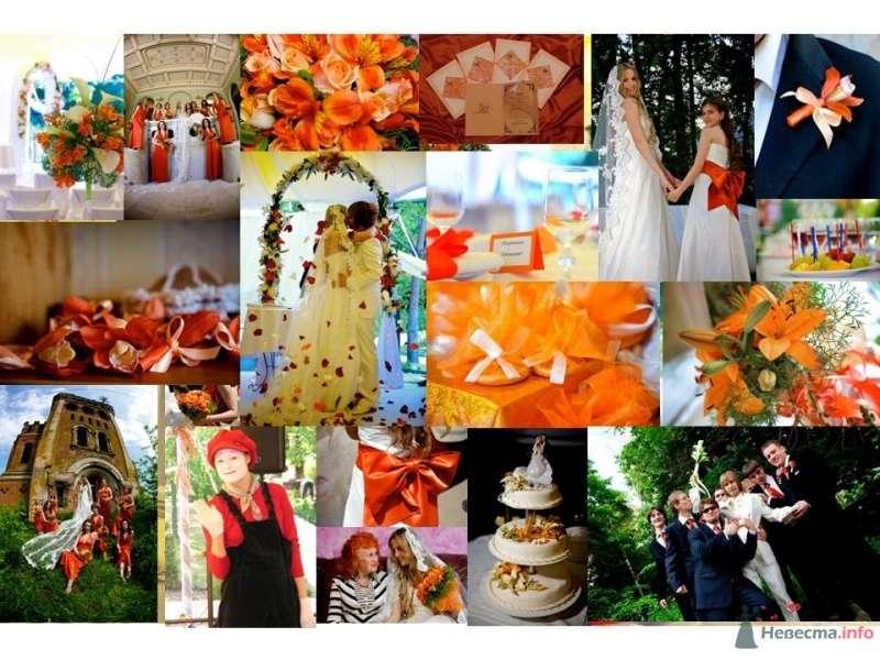 Фото 52617 в коллекции Разное (не мои работы) - Свадебный распорядитель - Бедрикова Оксана