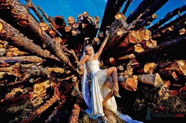 Фото 54795 в коллекции Разное (не мои работы) - Свадебный распорядитель - Бедрикова Оксана