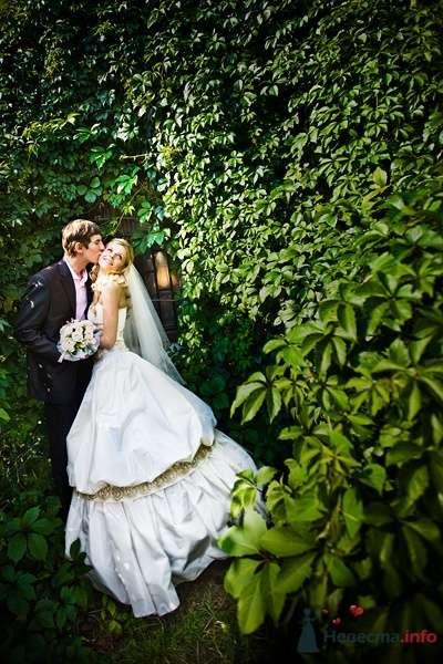 Фото 55130 в коллекции Разное (не мои работы) - Свадебный распорядитель - Бедрикова Оксана