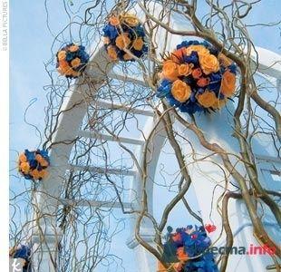 Фото 65055 в коллекции Разное (не мои работы) - Свадебный распорядитель - Бедрикова Оксана