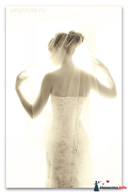 Фото 108924 в коллекции Мои фотографии - Chanel№5
