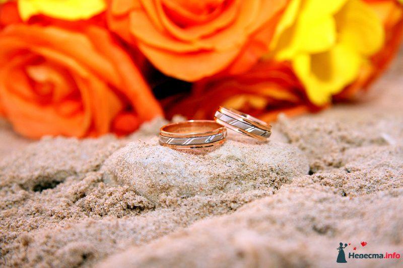 Обручальные кольца из белого и желтого золота с резьбой на фоне речного песка и роз. - фото 97797 trashprincess