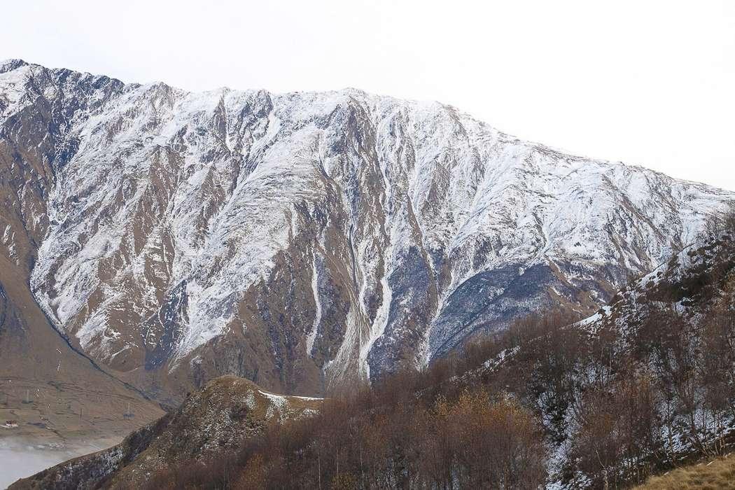 Фото 17230898 в коллекции София и Торнике - Свадебное агентство Love in Georgia