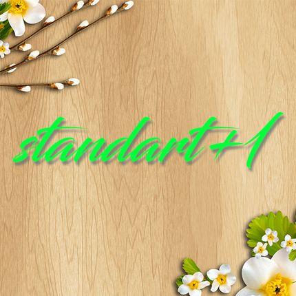 """Видеосъёмка полного дня - пакет """"standart+1"""""""